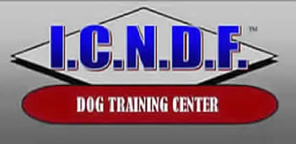 ICNDF dog training center in St. Augusting FL with large kennel runs. A home away from home for boarding or training your family dog or cat.  Logo001
