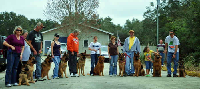 Common issues are jumping, pulling on the leash, charging the door, running away, and dog or food aggression.  We can evaluate your dog and skills to build that desired relationship!