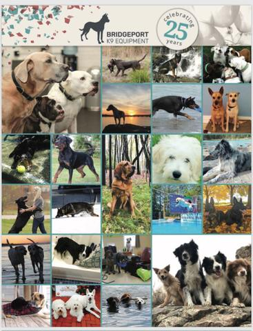 Dog care products we use; Pedigree canned food, Lixotinic vitamin supplement, i/d digestive care dry food, Scalibor collar, KONG toys , Nylabone toys, Retriever dry food, Taste of the Wild dry food.  Most can be found at Tractor Supply.